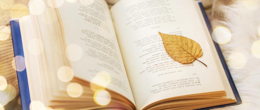 摄图网_300066483_wx_光斑下叶子和书(企业商用).jpg