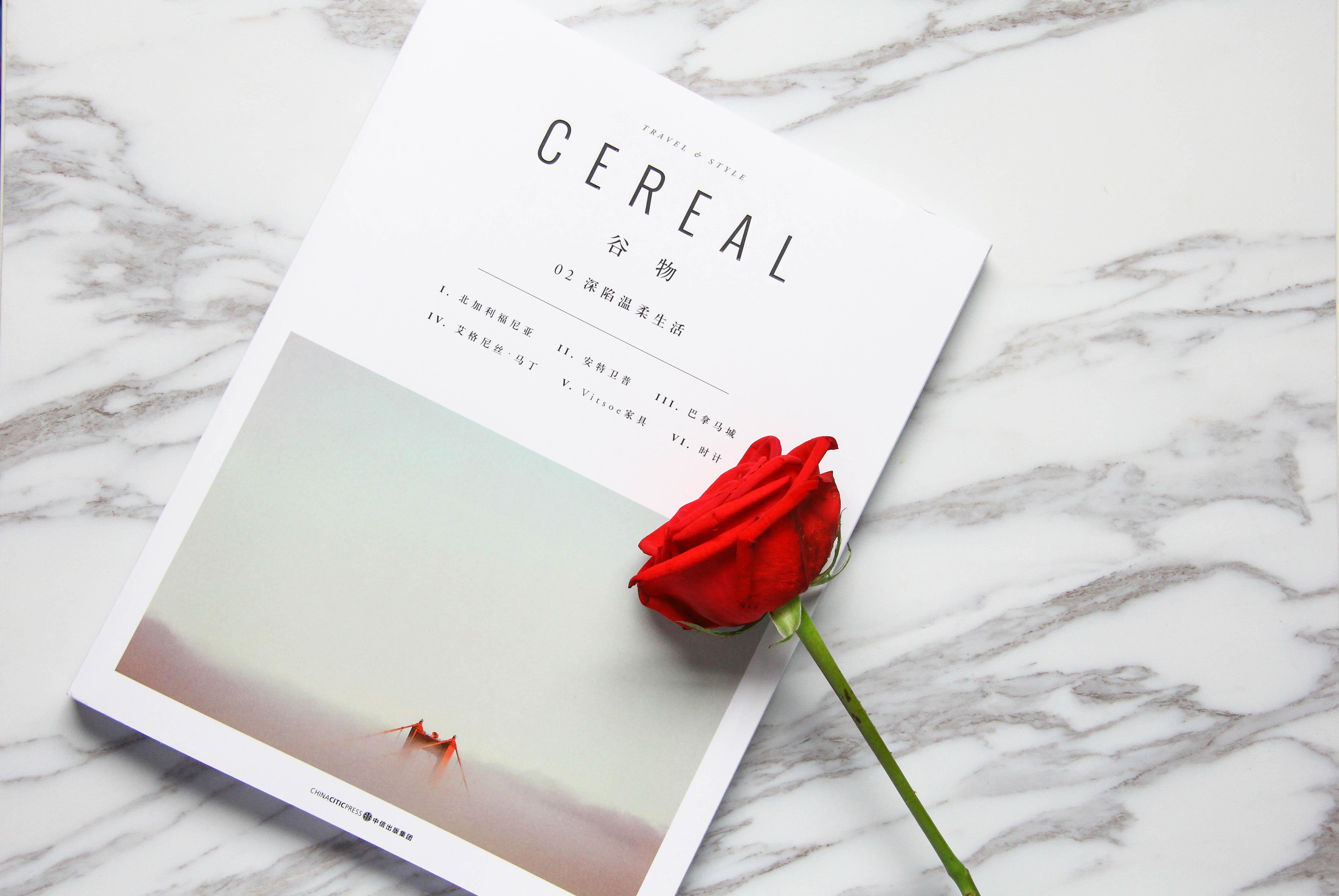 摄图网_500537614_书本上的一朵红玫瑰静物背景素材(企业商用).jpg